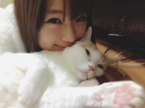 【NMB48】何故なぎちゃんの握手人気が下がってしまったのか?【渋谷凪咲】