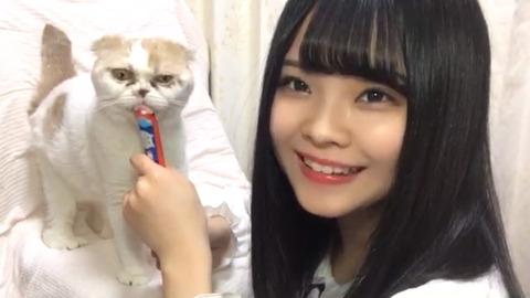 【SKE48】恐ろしい形相の猫を飼いならす美少女が話題に!