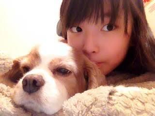 【AKB48G】メンバーがペットと絡んでる画像ください!