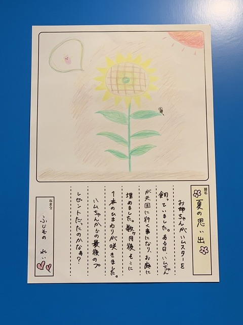 【AKB48】チーム8藤園麗「死んだハムスターを庭に埋めたらそこにひまわりが咲いた」