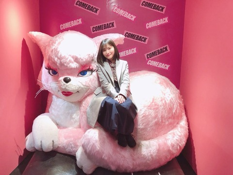 【AKB48】通りすがりの福岡聖菜「あの、ネコを拾ったんですけどウチじゃ飼えないので引き取ってもらっていいですか?」