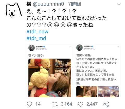【悲報】元AKB48岩田華怜さん、ディズニーで口付けしたプーさんを棚に戻し炎上