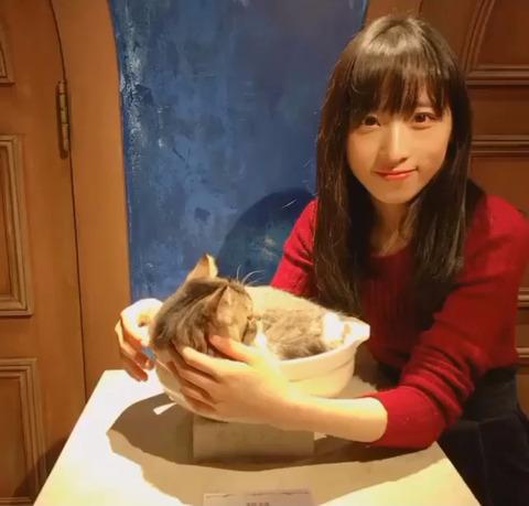 【悲報】ゅぃゅぃ、ルール違反で猫に嫌われてしまうwww【AKB48・小栗有以】