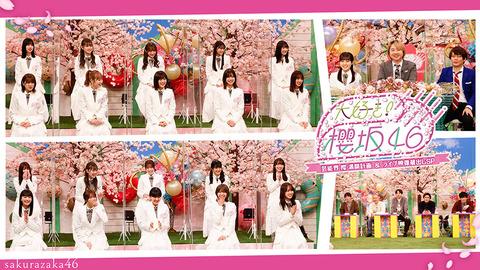 櫻坂46がdTVで特番放送決定‼︎あれ?AKBは?