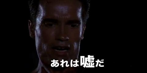 【SKE48】宮澤佐江「総選挙は今年が最後と約束したな。あれは嘘だ。」