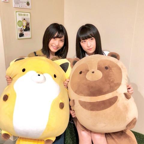 【AKB48】可愛すぎるタヌキ娘とキツネ娘に池袋パルコが騒然!【福岡聖菜・川本紗矢】