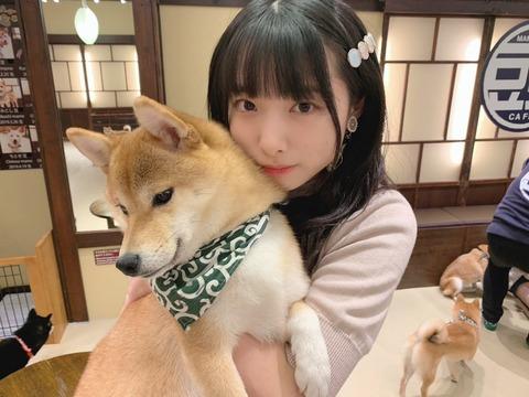 【AKB48】今こそ久保怜音を推すべきだろ!