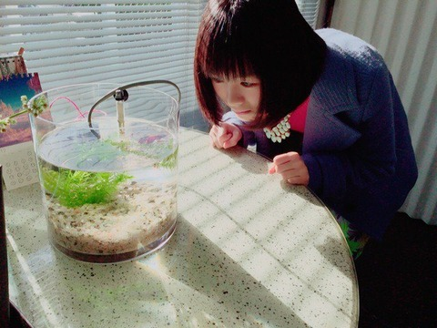 【AKB48G】今1番水着グラビアが見たいメンバーと言えば誰?