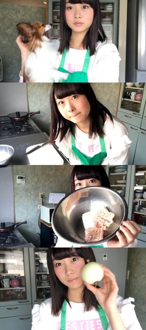 【悲報】AKB48達家真姫宝が作ったハンバーグが完全にゴミwwwwww