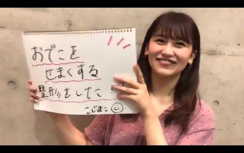 【AKB48】たかじゅりの整形疑惑をこじまこが告発www【高橋朱里・小嶋真子】