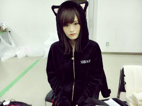 【画像】NMB48の楽屋に超絶可愛い黒猫が紛れ込む【山本彩】