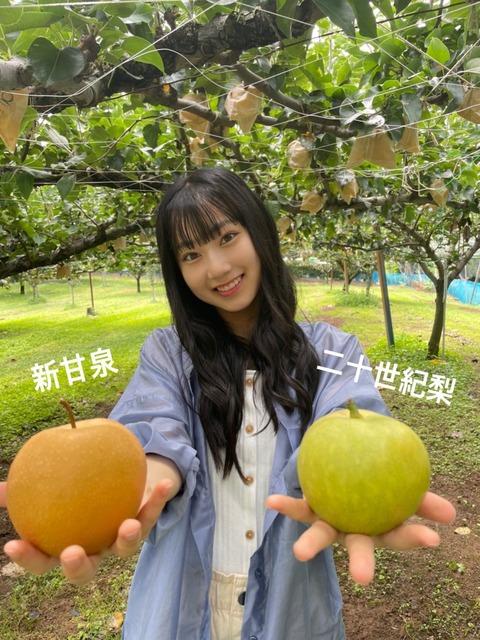 【朗報】AKB48さん、ガチで「とっとりの梨食べたいし(大使)」に任命される。任命式の開催も決定!
