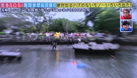 【文春】AKB48大家志津香レギュラーの「池の水ぜんぶ抜く」でボラ3000匹大量死