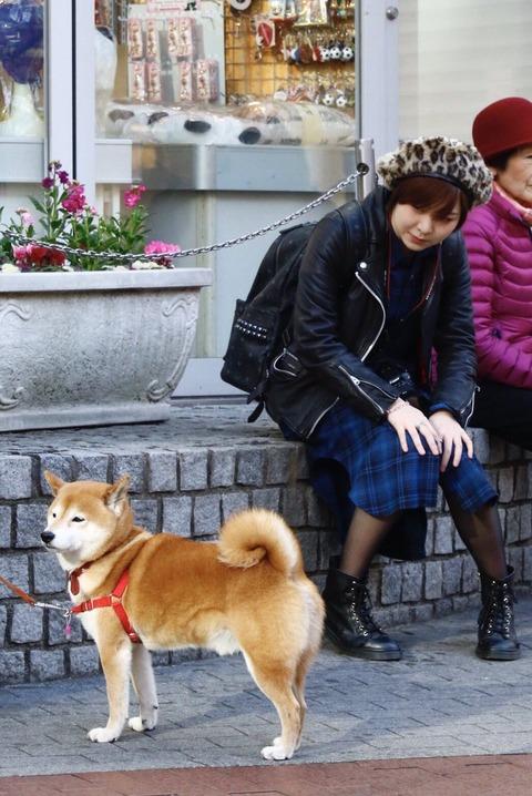 【元AKB48】岩田華怜「#彼女と横浜なうに使っていいよ」