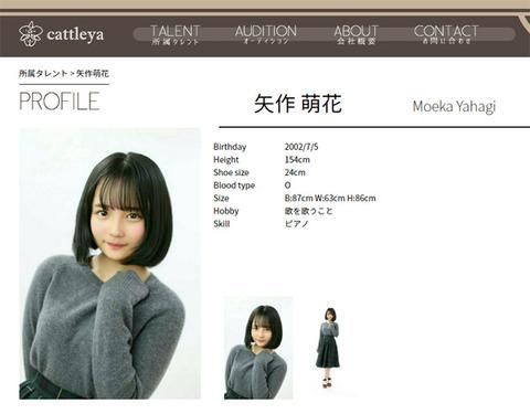 【悲報】SKE8期生矢作有紀奈の妹、矢作萌花ちゃんがAKB16期セレクション落ち