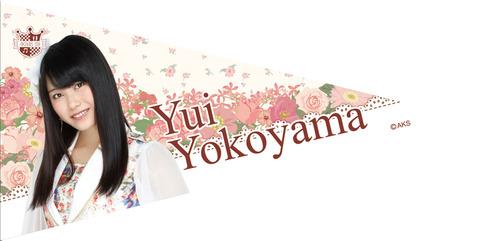 【AKB48G】ペナントってなんだったの?