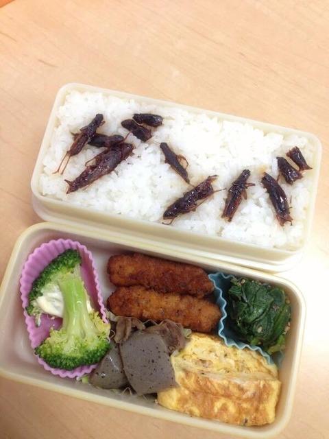 【閲覧注意】AKB48岩立沙穂さんが例のお弁当でセンター試験受験生にエールwww