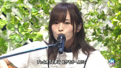 【AKB48】「365日の紙飛行機」って山本彩以外がセンターでも浸透してたの?