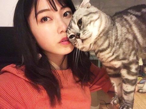 【AKB48G】メンバーが飼ってる猫の画像を晒すスレ