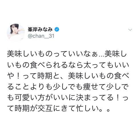 【悲報】AKB48峯岸みなみさんのライザップ、全く無意味だった・・・
