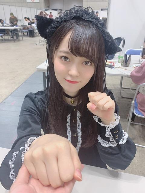【AKB48】家の前にこの猫ちゃんが捨てられてたらどうする?