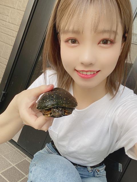 【AKB48】チーム8の髙橋彩音ってめちゃくちゃ可愛くね?