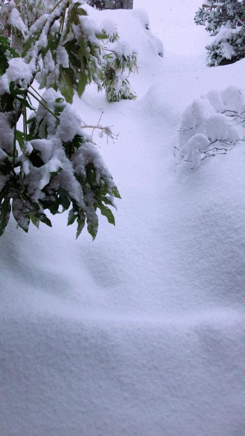 【AKB48】くれにゃんが雪かきしてる【長久玲奈】