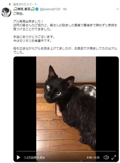 【朗報】NMB48井尻晏菜の猫ちゃん「アルくん」が無事帰宅!!!