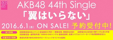 【AKB48】6/1発売の44thシングル、タイトルは「翼はいらない」に決定!