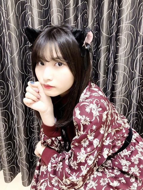 【AKB48G】#猫の日 の猫メン画像が集まるスレ