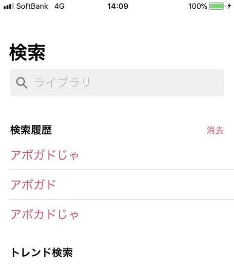 【画像】板野友美さんの検索履歴ワロタwwwwww