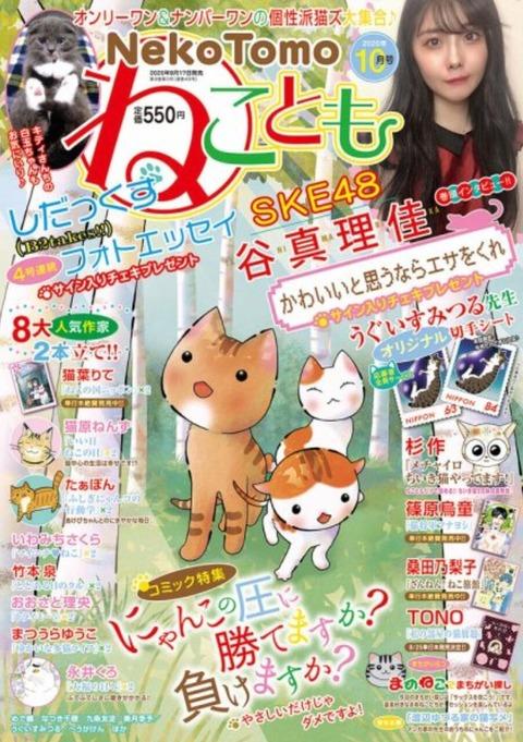 【朗報】SKE48谷真理佳、ねことも10月号の表紙に