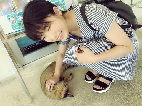 【画像あり】ゆいはんってもしかして見せたがり?わざと見えそうな服着てない?【AKB48・横山由依】