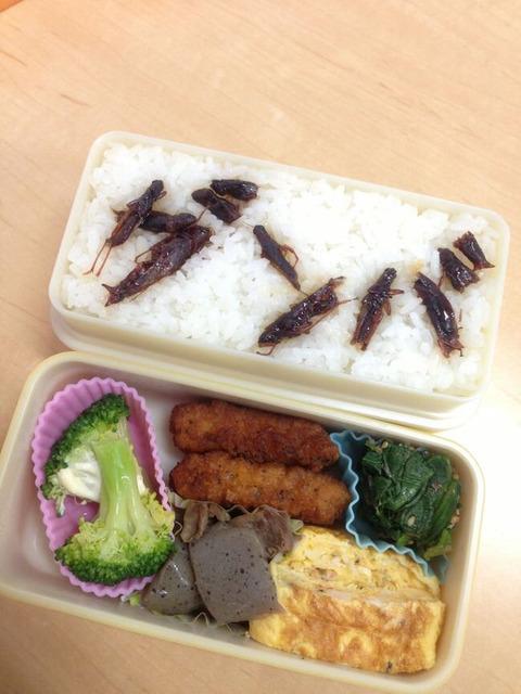 【AKB48】ゅぃゅぃ「◯◯君のためにお弁当作ってきたから…よかったら食べて下さい…」←どうする?【小栗有以】