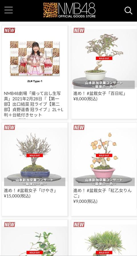 【朗報】NMB48オフィシャルショップ、山本彩加の盆栽が全品完売www