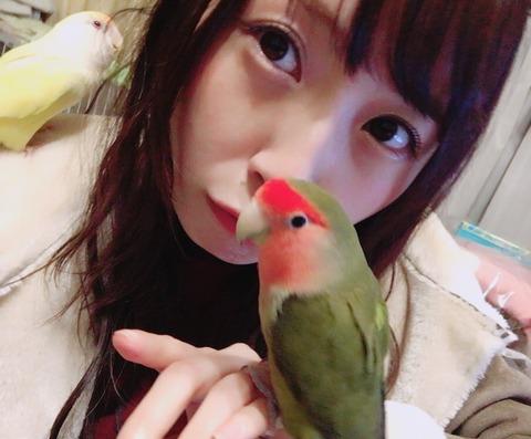 【SKE48】ちゅりは鳥と一緒だと可愛さが10倍増しになるな【高柳明音】