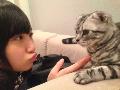 【AKB48G】メンバーのペットで一番可愛いのは?