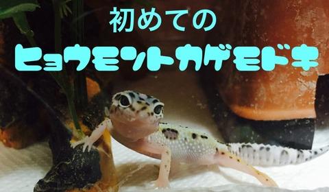 【NGT48】荻野由佳「神に誓ってファンとの私的交流は一切ない」