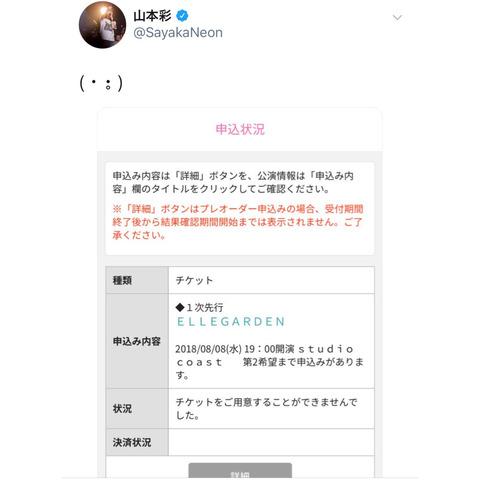 【悲報】さや姉がエルレ落選で号泣【NMB48・山本彩】