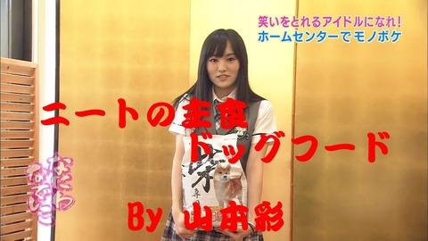 【悲報】AKB48Gメンバーのほとんどが総自宅警備員化してしまっている件
