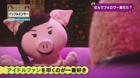 【悲報】NHK「乃木坂ファンは、職業不詳の血圧上り坂46。」と放送してしまうwwwwww