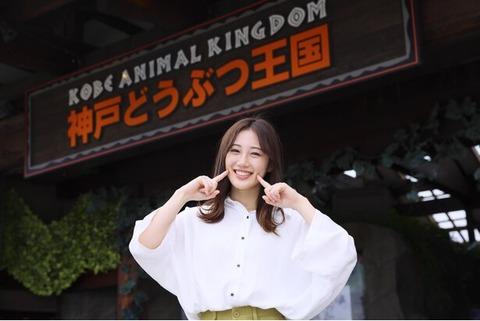 【NMB48】南羽諒、ウォーカープラスで新連載「はあさのハッピーあにまる図鑑」が始動!