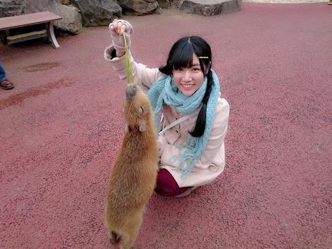 【AKB48】北澤早紀ちゃんを嫁に欲しい