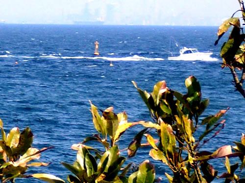 横浜ベイサイドマリーナからの東京湾2