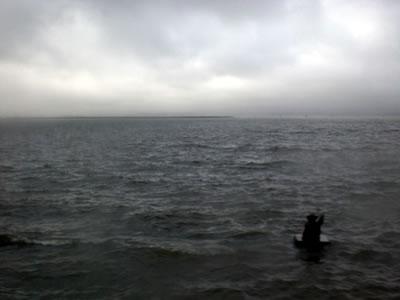 11台風12号宍道湖2