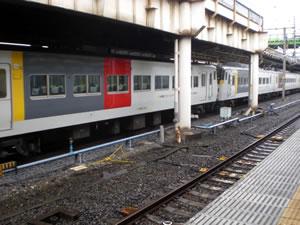 185系電車写真100324