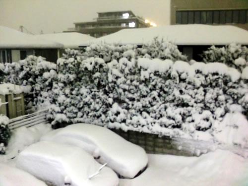 関東甲信越大雪201402146