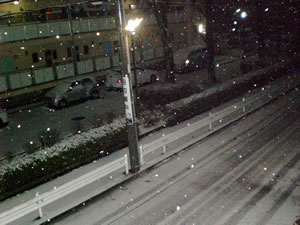 東京の雪景色画像1
