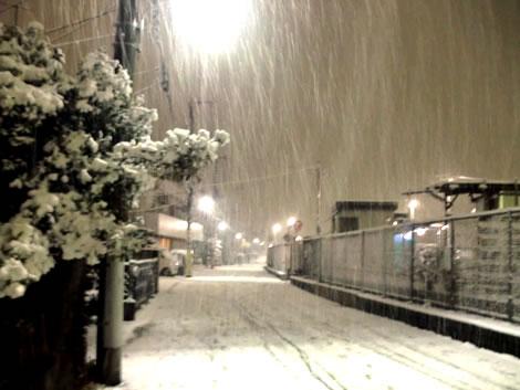 雪20120123−3