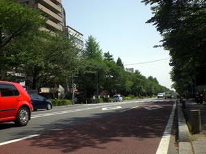 国立市大学通り写真1